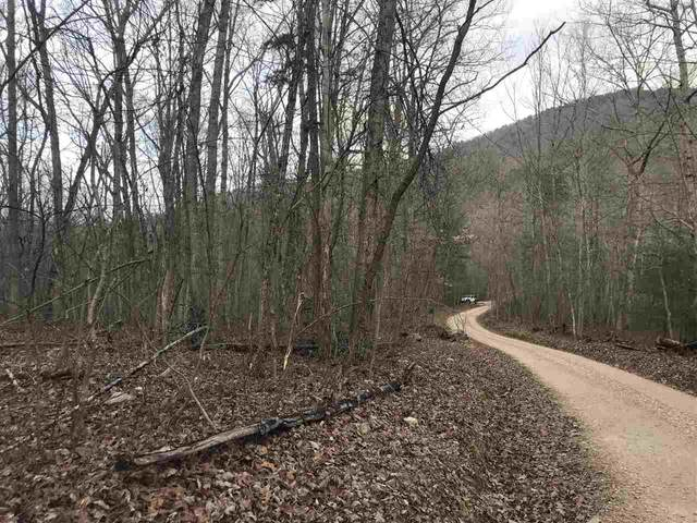 LOT 6 Section 3 Cutbank Ln, ELKTON, VA 22827 (MLS #612234) :: KK Homes