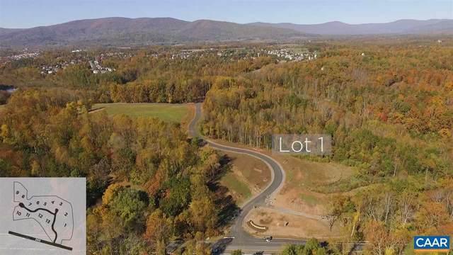 1 Eagle View, CHARLOTTESVILLE, VA 22903 (MLS #612262) :: Jamie White Real Estate