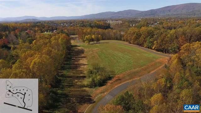 10 Eagle View, CHARLOTTESVILLE, VA 22903 (MLS #612264) :: Jamie White Real Estate