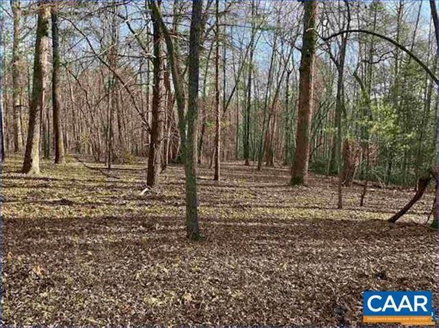 000 Green Creek Ln, SCHUYLER, VA 22969 (MLS #612335) :: KK Homes