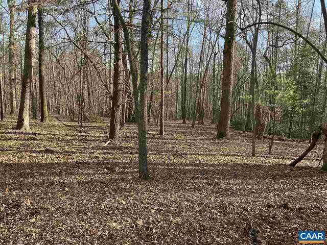 0000 Green Creek Ln, SCHUYLER, VA 22969 (MLS #612336) :: KK Homes