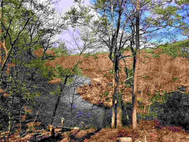 Lot 13 Rapidan Bend, BARBOURSVILLE, VA 22923 (MLS #612423) :: Jamie White Real Estate