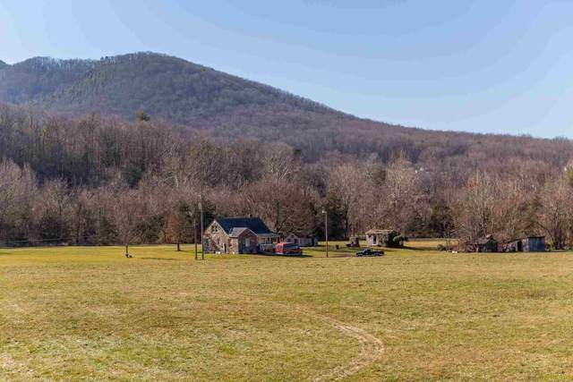 18620 Mt Pleasant Rd, ELKTON, VA 22827 (MLS #612649) :: Jamie White Real Estate