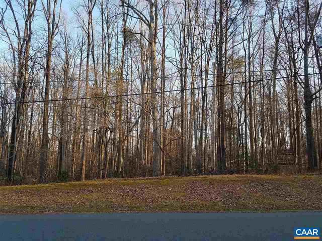 10 Nottingham Rd #1173, LOUISA, VA 23093 (MLS #612653) :: Jamie White Real Estate