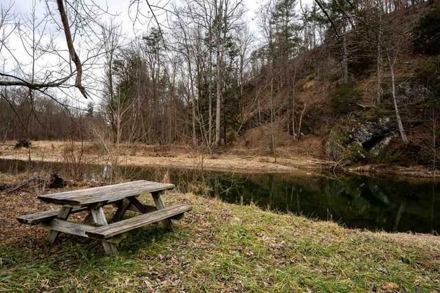TBD-1 Brocks Gap Rd, FULKS RUN, VA 22830 (MLS #612711) :: KK Homes