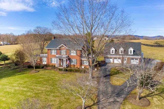 4190 S Lee Hwy, Natural Bridge, VA 24578 (MLS #612745) :: Jamie White Real Estate