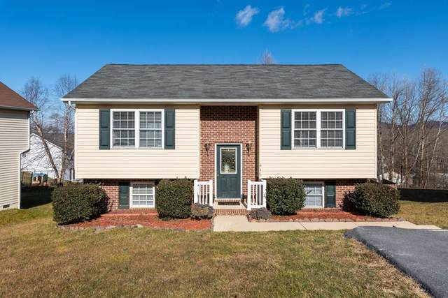 416 Kirby Ave, WAYNESBORO, VA 22980 (MLS #612800) :: KK Homes