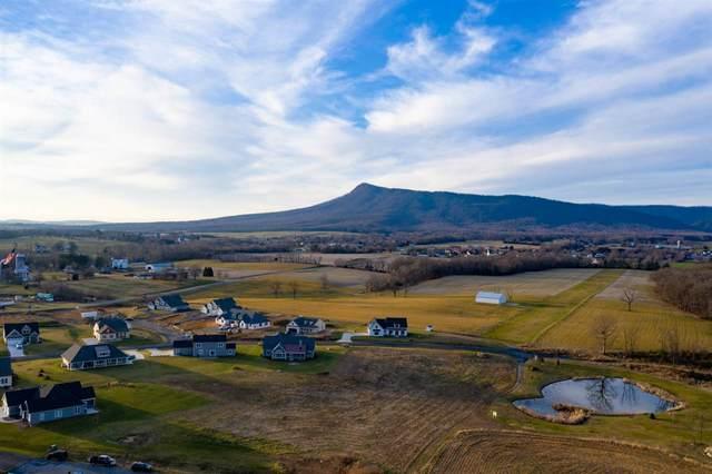 Lot 25 Retriever Ln, Mcgaheysville, VA 22840 (MLS #612813) :: Real Estate III