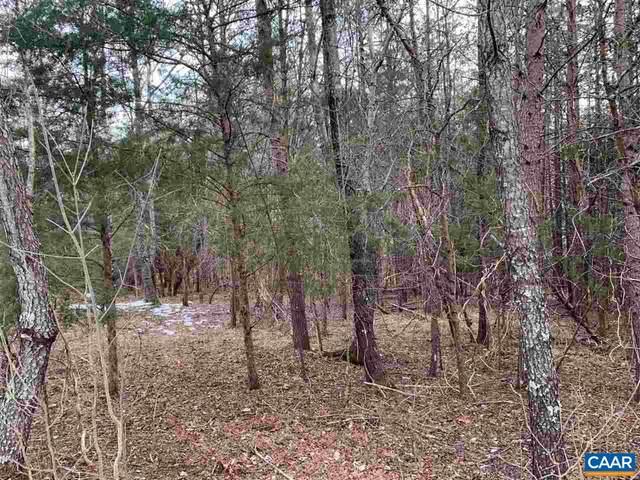 Satinwood Ln, Nellysford, VA 22958 (MLS #613292) :: Jamie White Real Estate