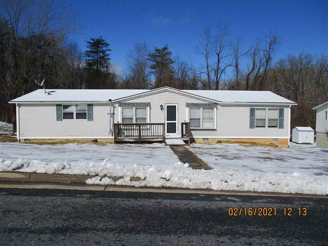 1093 Albemarle Ave, WAYNESBORO, VA 22980 (MLS #613691) :: Real Estate III