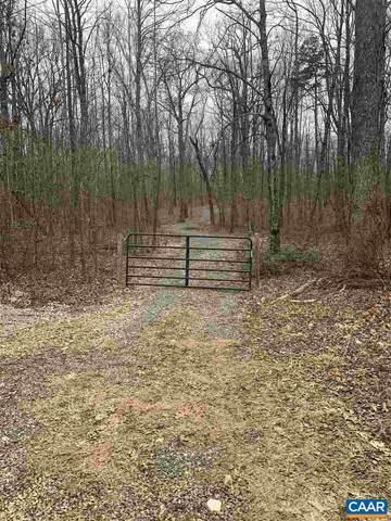 530 Old C C C Rd, GORDONSVILLE, VA 22942 (MLS #613997) :: Jamie White Real Estate