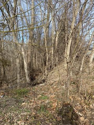 TBD Hillside Dr 16,17,18,19,20,, Verona, VA 24482 (MLS #614101) :: Real Estate III