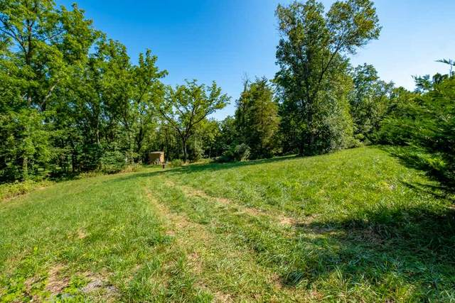 0 Meadow Top Ln, Mount Crawford, VA 22841 (MLS #614135) :: KK Homes