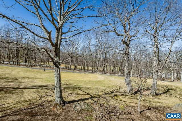 2105 Fairway Woods, Wintergreen Resort, VA 22967 (MLS #614225) :: Jamie White Real Estate