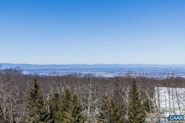 3205 North Ridge Condos, Roseland, VA 22967 (MLS #614232) :: Jamie White Real Estate