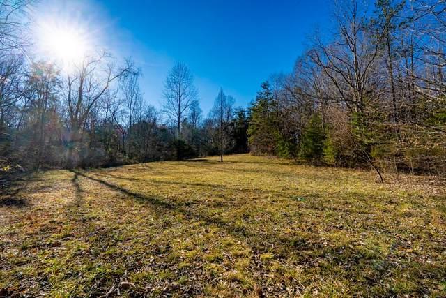 TBD Ed Jones Rd, SCOTTSVILLE, VA 24590 (MLS #614520) :: KK Homes