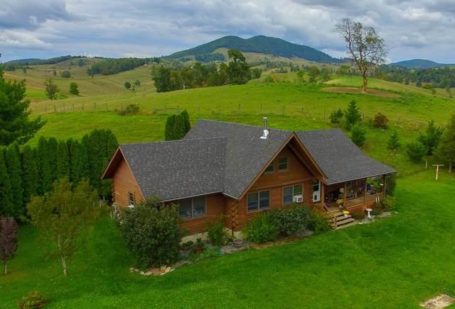 770 Hardscrabble Rd, Blue Grass, VA 24413 (MLS #614784) :: KK Homes