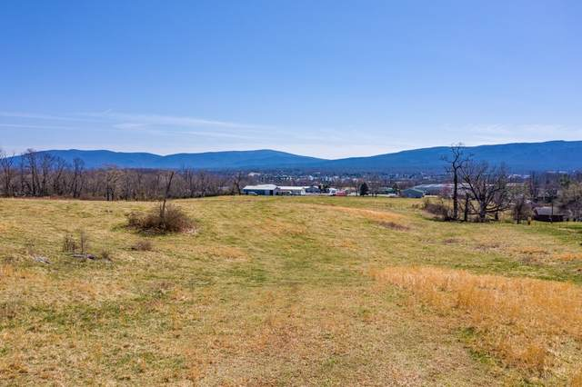 TBD White Hill Rd, Stuarts Draft, VA 24477 (MLS #615153) :: KK Homes