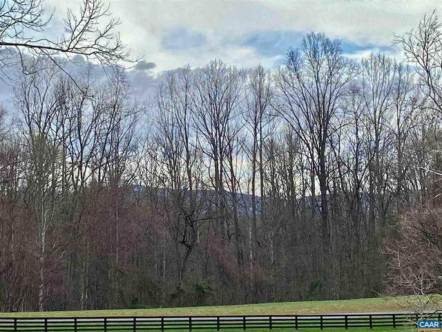 Lot 53 Hemlock Creek Ct #53, Earlysville, VA 22936 (MLS #615355) :: Real Estate III
