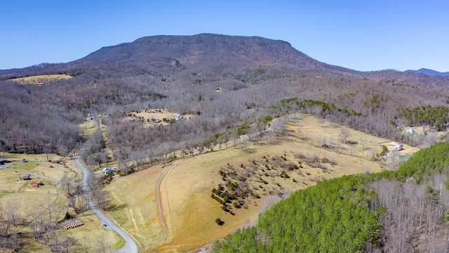 TBD Jacktown Rd 5A, LEXINGTON, VA 24450 (MLS #615412) :: Real Estate III