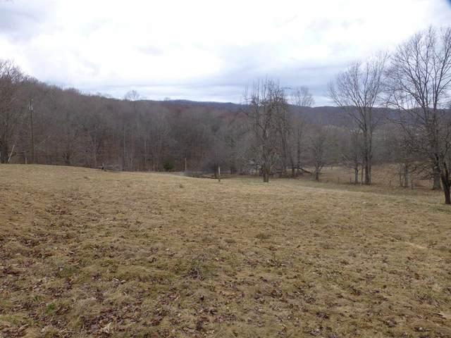 4734 Maple Sugar Rd, Blue Grass, VA 24413 (MLS #615530) :: KK Homes