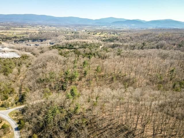 TBD Miracle Ridge Rd, ELKTON, VA 22827 (MLS #615595) :: Real Estate III