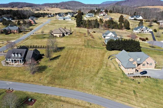 Heritage Dr, LEXINGTON, VA 24450 (MLS #615698) :: Real Estate III