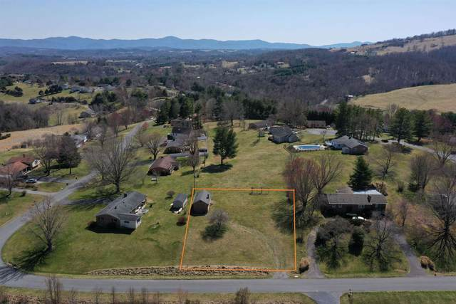 Southwest View Dr #13, LEXINGTON, VA 24450 (MLS #615700) :: Real Estate III