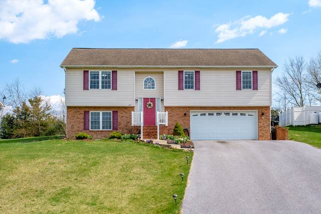 107 Falcon Ln, Weyers Cave, VA 24486 (MLS #615890) :: KK Homes