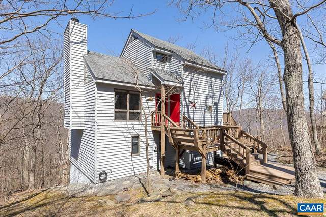41 Pedlars Pt, Roseland, VA 22967 (MLS #616019) :: KK Homes