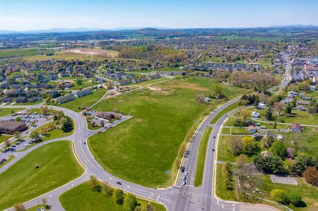 26.76 Acres Turner Ashby Dr, BRIDGEWATER, VA 22812 (MLS #616427) :: KK Homes