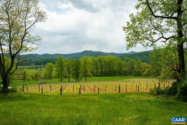 1030 Carpenter Dr F11, North Garden, VA 22959 (MLS #616833) :: Jamie White Real Estate