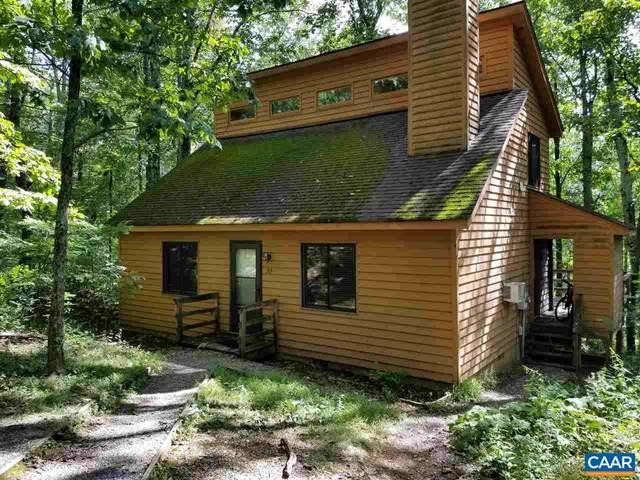 39 West Elkwood Dr, Wintergreen Resort, VA 22967 (MLS #617691) :: KK Homes
