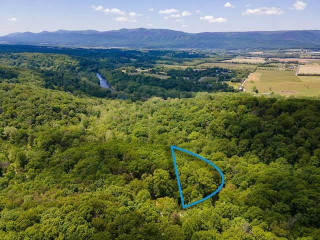 TBD Cold Springs Dr, Shenandoah, VA 22849 (MLS #617918) :: Real Estate III