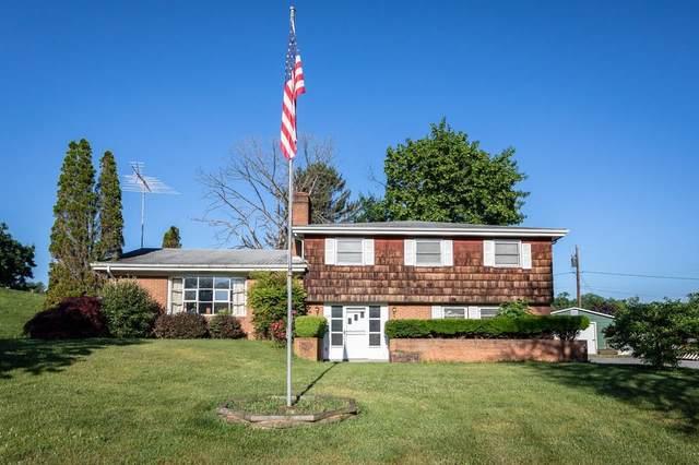 304 Virginia Ave, Luray, VA 22835 (MLS #618110) :: KK Homes