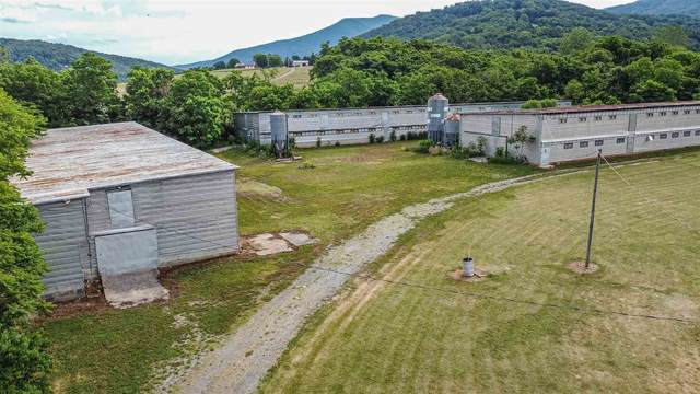 199 Kite Hollow Rd, Stanley, VA 22851 (MLS #618273) :: KK Homes