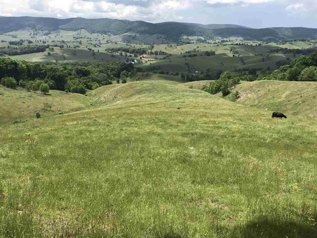 Wimer Mountain Rd, Blue Grass, VA 24413 (MLS #618532) :: KK Homes