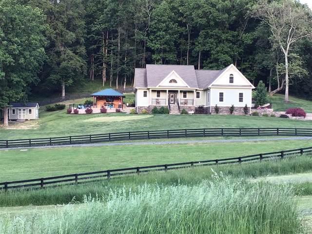 230 Koogler Trl, Raphine, VA 24472 (MLS #618568) :: Real Estate III