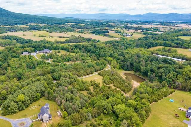 TBD- 4 acres Hickory Point Trl, ROCKINGHAM, VA 22801 (MLS #618577) :: Jamie White Real Estate