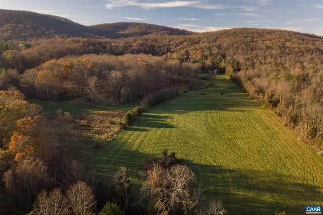 0 Stony Point Pass, KESWICK, VA 22947 (MLS #618621) :: Real Estate III