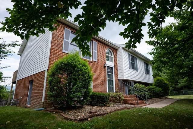 1250 Waterman Dr, HARRISONBURG, VA 22802 (MLS #618665) :: KK Homes