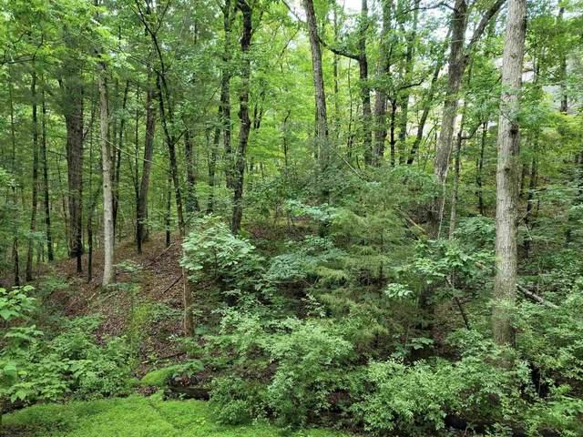 TBD Lanier Ln, Mcgaheysville, VA 22840 (MLS #618683) :: Real Estate III
