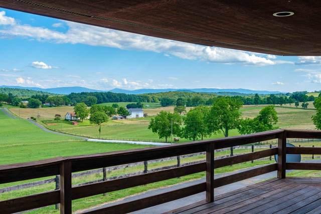 1103 Quicks Mill Rd, STAUNTON, VA 24401 (MLS #618696) :: KK Homes
