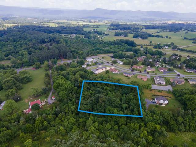 Atkins Dr, Luray, VA 22835 (MLS #618759) :: Real Estate III