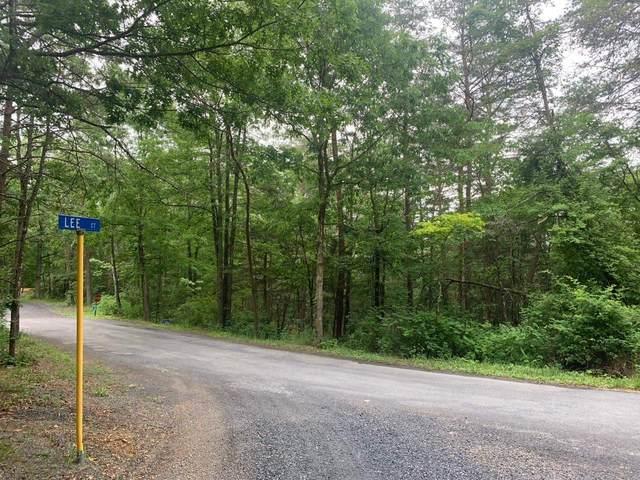0 Spitz Ln, Basye, VA 22810 (MLS #618764) :: Real Estate III