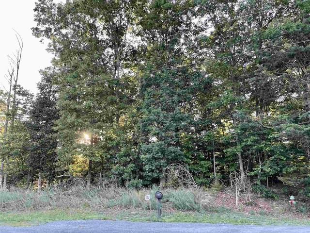 0 Pocahontas Ave, Shenandoah, VA 22849 (MLS #618920) :: KK Homes