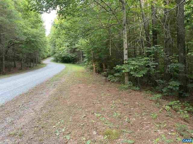 999 Slate River Trl, Arvonia, VA 23004 (MLS #619016) :: Jamie White Real Estate