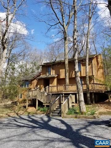 31 Deer Springs Ln, Wintergreen Resort, VA 22967 (MLS #619021) :: Jamie White Real Estate