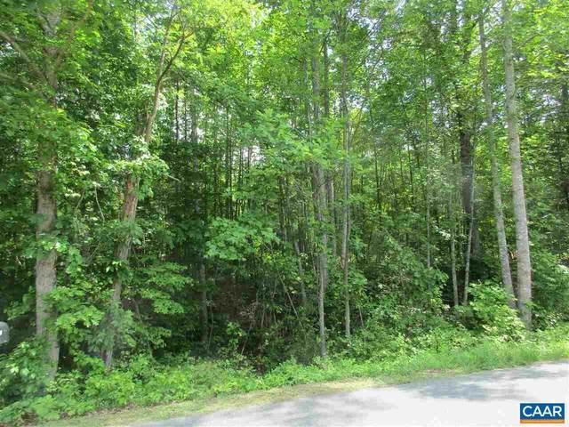TBD Simmons Gap Rd 009-00-00-014E3, DYKE, VA 22935 (MLS #619043) :: Jamie White Real Estate