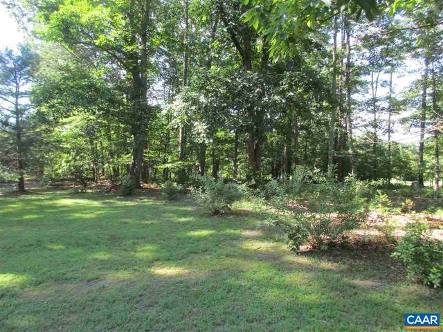 PARCEL 14G Sophies Pine Ln, DYKE, VA 22935 (MLS #619045) :: Jamie White Real Estate